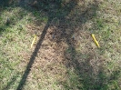 More Megatree Assembly :: These 2 stakes are wedge 1 of the same slice