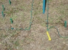 Stick Trees :: It helps to mark the first 2 stakes used.  This was the starting stake...